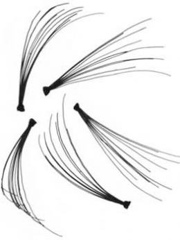 Накладные ресницы: как клеить правильно - фото №1