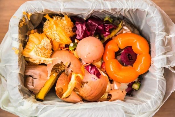 Как правильно сортировать мусор и зачем это нужно делать: забота о будущем - фото №1