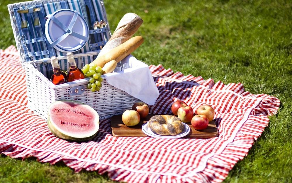 дети собрались на пикник что взять с собой