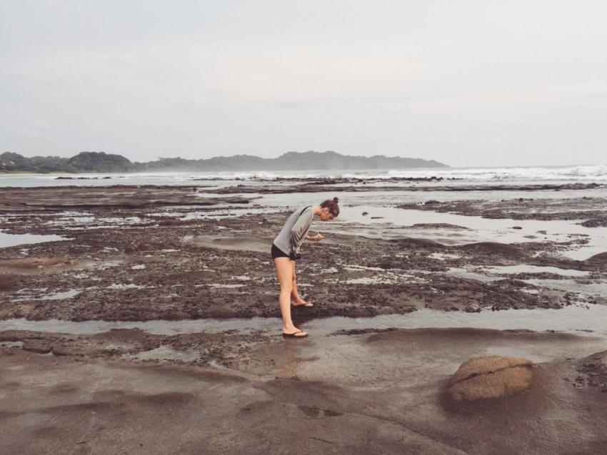 пластиковые трубочки океан