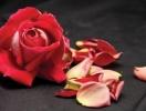 Традиции Дня влюбленных