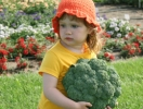 Капуста брокколи – вкусно, полезно, просто!