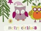 Прикольные поздравления с Рождеством 2013