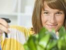Как подготовить комнатные растения к осени