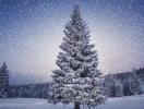 Астрологический прогноз на 9 декабря 2013