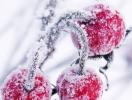 Астрологический прогноз на 13 января 2014