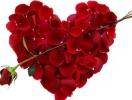Смс с Днем святого Валентина 2015