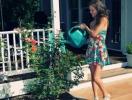 Как быстро и надежно арендовать дачу на лето