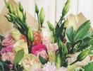 6 главных цветочных трендов