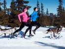 Что нужно знать о беге зимой