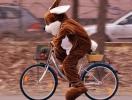 Кто придумал пасхального зайца: традиции Пасхи