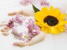 Как укрепить ломкие и сухие ногти с помощью домашних средств