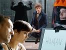 На какой фильм пойти в кинотеатр в ноябре: драма с Марион Котийяр, спин-офф к «Гарри Поттеру» и черно-белое кино
