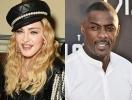 Идрис Эльба опроверг связь со знаменитой Мадонной