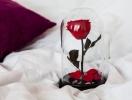 Как сделать секс с презервативом приятнее: простые работающие рекомендации