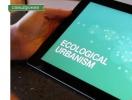 Мобильный соратник: какие приложения скачать на телефон, чтобы эффективнее спасать экологию