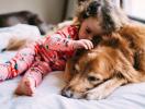 По ЭТОЙ причине вы просто обязаны завести в доме собаку во время беременности