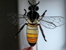 Это «ж-ж-ж» неспроста: что делать, если вас укусило насекомое?