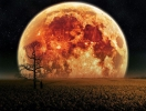 Лунное затмение 7 августа: что нельзя делать в этот день