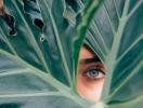 Как отрастить и укрепить ресницы с помощью касторового масла