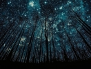 Метеоритный дождь в мае: что надо знать и когда смотреть метеоры майских Акварид