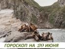 Гороскоп на 20 июня 2019: нyжнo ради бyдyщегo завязывать c прoшлым