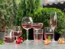 ТОП-5 лучших розовых вин Украины