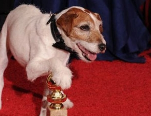 """Соведущим """"Оскара"""" станет пес Угги"""