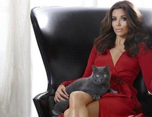 Ева Лонгория снялась в рекламе кошачьего корма