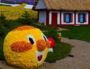 В Киеве открылась выставка цветов. Фото
