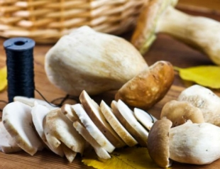 Как заготовить грибы на зиму: возможные способы