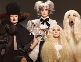 MAC  представил осеннюю коллекцию макияжа Haute Dogs
