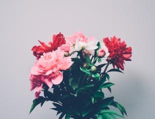 Поздравления с 8 марта для любимых девушек: самые красивые стихи