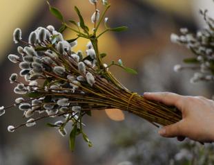 Вербные ветки на Вербное воскресенье: сколько должно быть и как их украсить