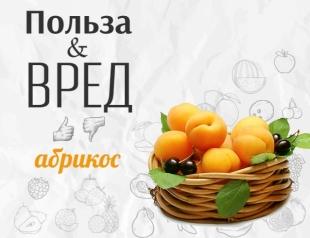 Все, что мы должны знать про абрикос: чем полезен и кому противопоказан