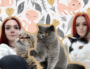 В ответе за братьев меньших: интервью с волонтером приюта кошек Алисией Полихой
