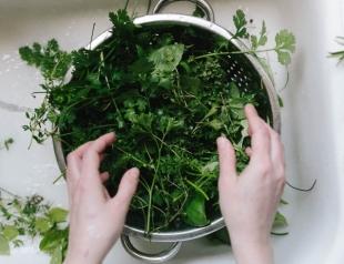 """""""Правила выживания"""": как выбрать полезную зелень без нитратов"""
