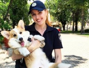 Киев глазами собаки: смотрите лучшие туристические места столицы (ВИДЕО)
