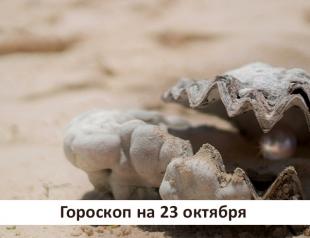 Гороскоп на 23 октября 2019: восхищаясь красотой жемчужины, мало кто вспомнит раковину
