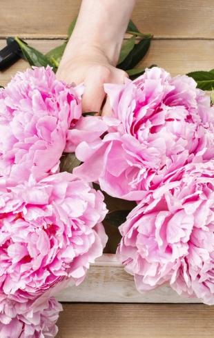 Секреты флористов: каким должен быть красивый осенний букет на 1 сентября