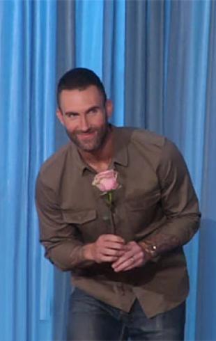 Любовь всей жизни: Адам Ливайн из Maroon 5 встретился с влюбленной в него 3-летней поклонницей