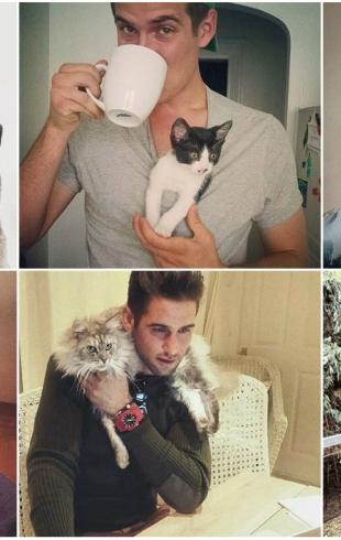 Инстаграм для души: аккаунт, в котором выкладывают фото мужчин с котами