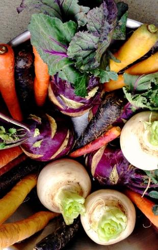 Налаживаем отношения с организмом после застолья: рецепты легких и сытных салатов