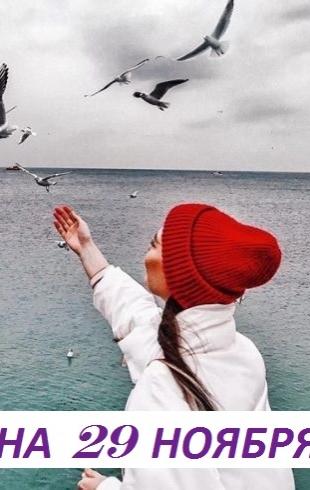 Гороскоп на 29 ноября: cамое важное — это навести порядок у себя в душе