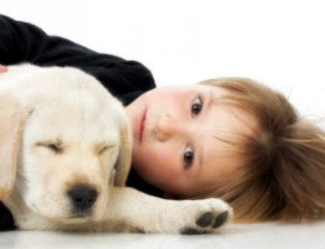 Как помочь ребенку пережить утрату питомца