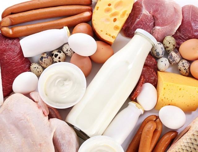 Белки животного происхождения: полезные источники растительного белка