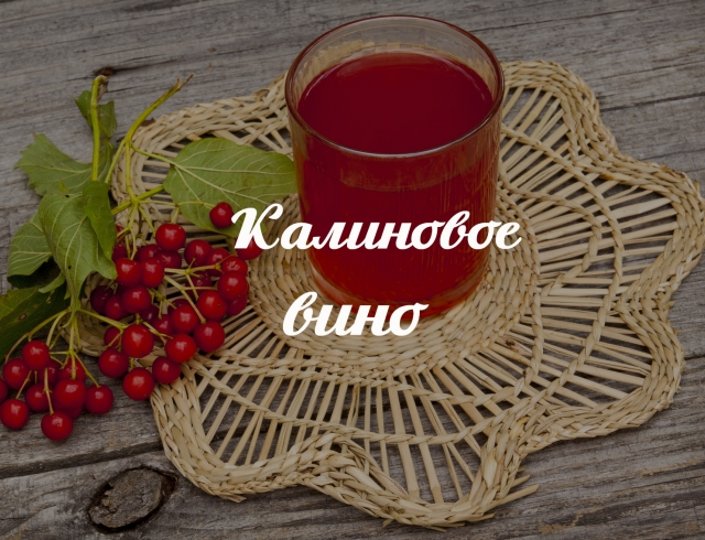 Рецепт вина из калины в домашних условиях: готовим запасы полезного напитка