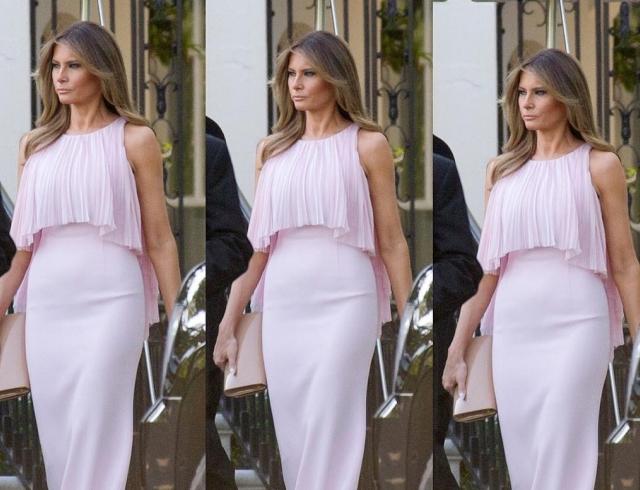 Сама нежность: Мелания Трамп блистала в роскошном платье на свадьбе министра финансов (ФОТО)