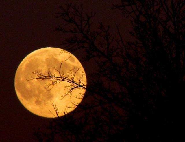 Полнолуние в октябре 2017: что ждать от поздней Урожайной Луны