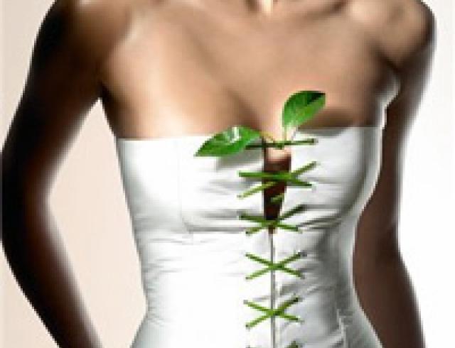 Диета по звездам. Как получить красивое тело, не лишая себя простых удовольствий?